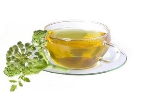 engelwortel thee